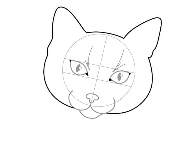 Рисунок 2 - Контур головы