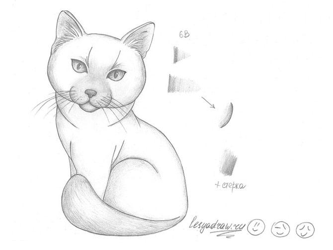Рисунок 6 - Готовый рисунок кошки