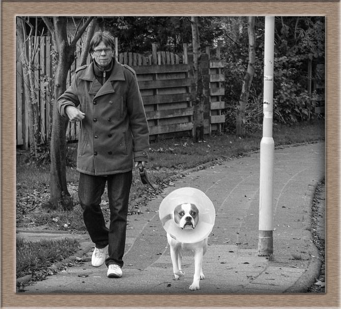 Рисунок 2 - На прогулке с хозяином