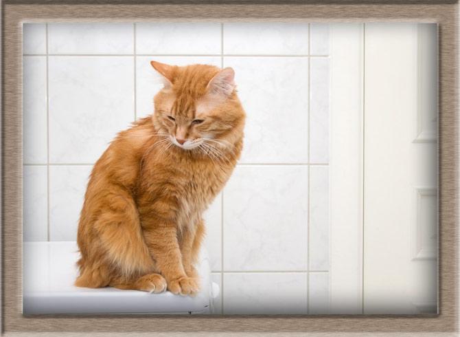 Рисунок 2 - В ванной комнате