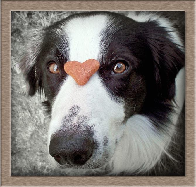 Рисунок 2 - Сердечко на носу